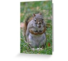 This is my nut Greeting Card