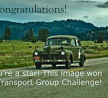Challenge Winner Banner Entry by Bryan D. Spellman