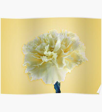 Turn Yellow Spring Bloom Poster