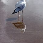 Reflections of myself by Karen Stackpole