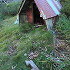 Keep dry hut  by Donovan wilson