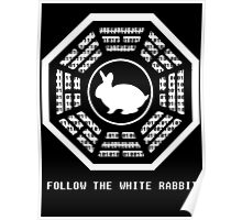 Follow the White Rabbit Poster