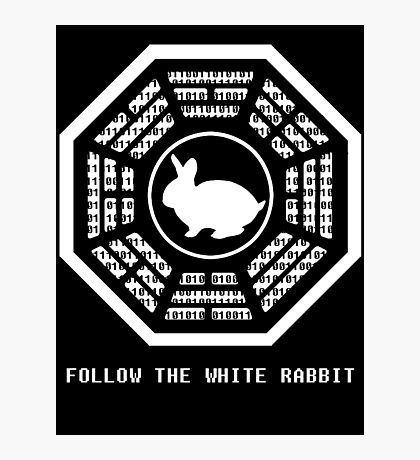 Follow the White Rabbit Photographic Print