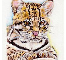 Ocelot: Leopardus pardalis by houseofsnarf