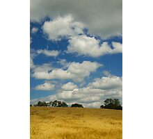 Wheatfield and Clouds Photographic Print