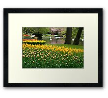 Keukenhof, Holland - I Framed Print