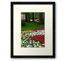 Keukenhof, Holland - VIII Framed Print