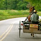Amish Days by Monte Morton