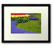 Keukenhof, Holland - XIII Framed Print