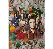 Firefly Collage Photographic Print