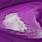 Purple Daze by vigor