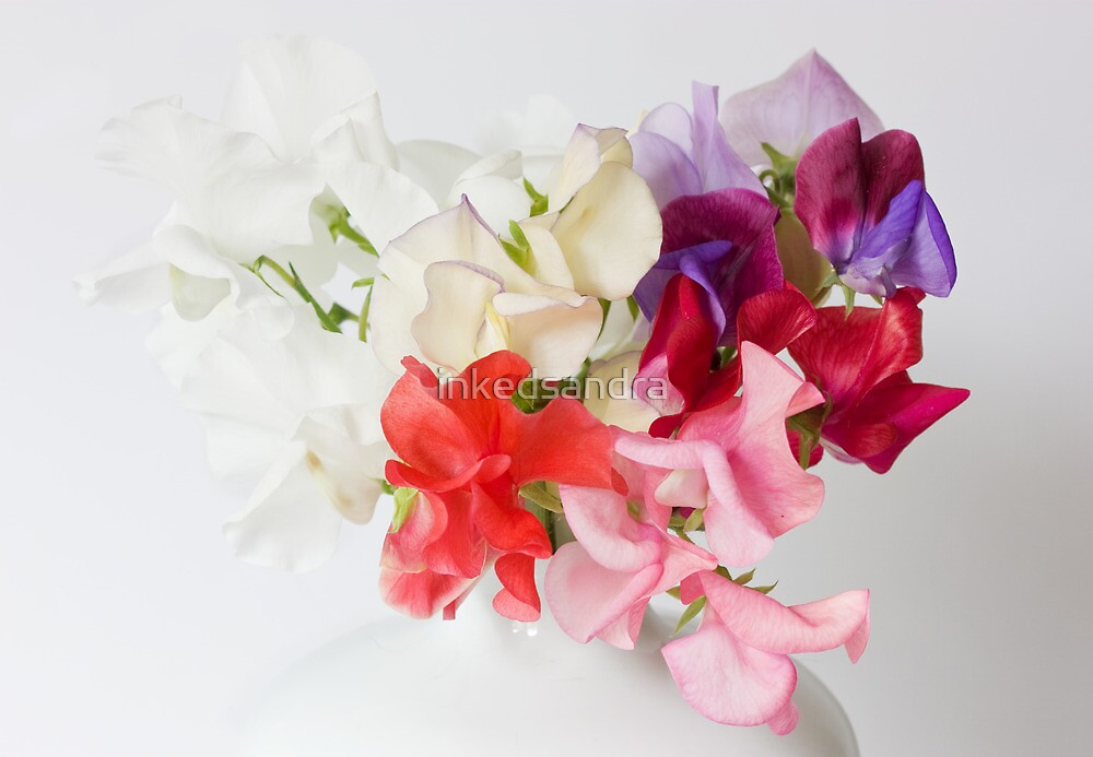 Sweet Peas by inkedsandra