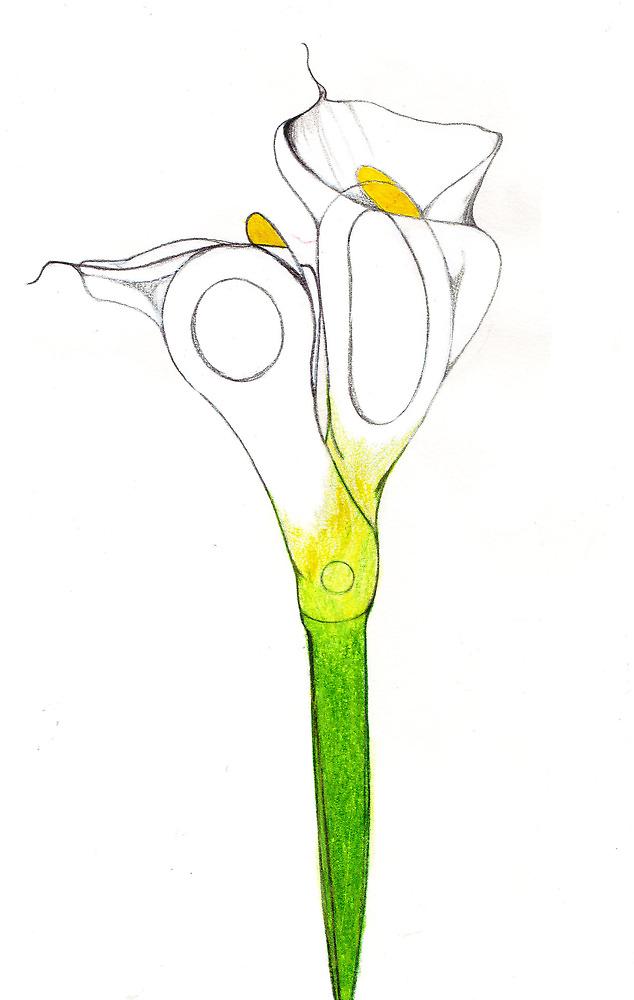Scissor Lilly by AmberMJohnson