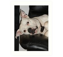dog tired. Art Print