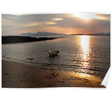 Sunset with dogs Poster