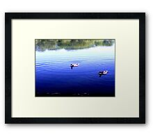 Ha And He thinks That's The Right Way-Duck Troubles Framed Print