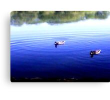 Ha And He thinks That's The Right Way-Duck Troubles Canvas Print