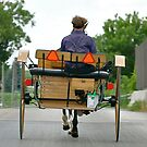 High Performance Amish Buggy by Monte Morton