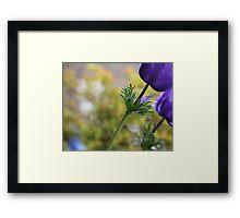 Anemone Stem Framed Print