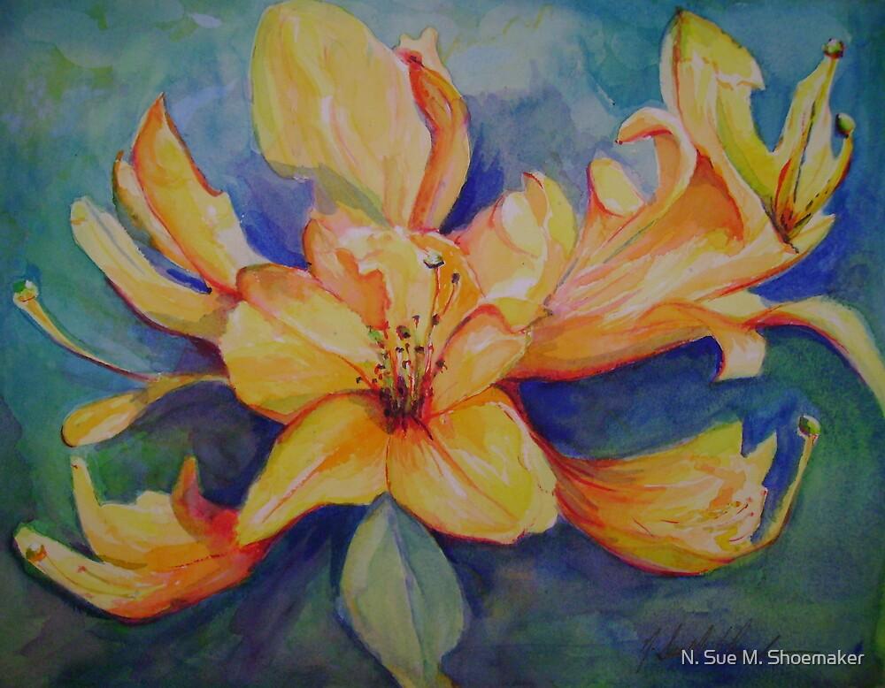Azalea by N. Sue M. Shoemaker