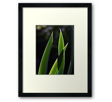 Intersection... Framed Print