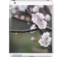 blossoms and dew drops iPad Case/Skin