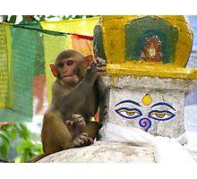 Monkey Lookout, Swayambhunath, Kathmandu Photographic Print