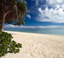 Aitutaki Dreaming by Michael Treloar