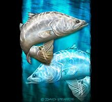 Cruising Chrome - barramundi by David Pearce