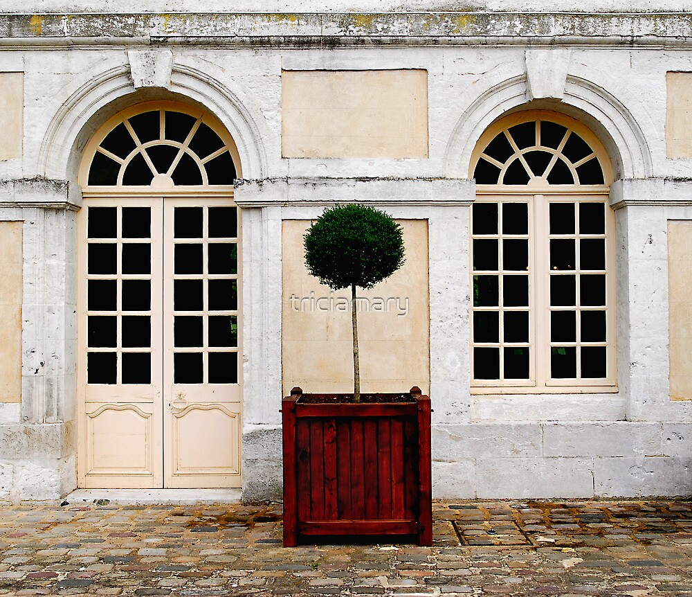 Classic France.... by triciamary