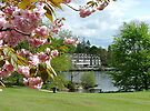 Spring, Lake Windemere, Lake District,Cumbria. by Roy  Massicks