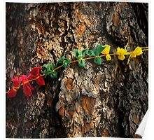 Prayer Cloths on a Tree in Devils Tower National Monument  Poster