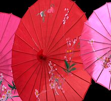 Festa-parasols by Cathy  Walker