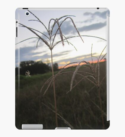 Weed with spider iPad Case/Skin