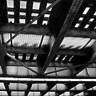 bridge by Nenad  Njegovan