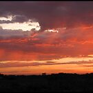 Colorful Skys by Linda Miller Gesualdo