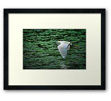 Flying Over Green Water Framed Print