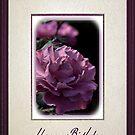 Happy Birthday - Mauve Rose by Joy Watson
