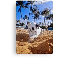 Dig your well before you're thirsty. Canvas Print