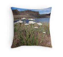 Ancient Lakes Trail #2 Throw Pillow
