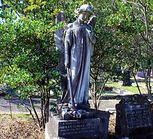 Angel at North Sydney Cemetary by Doug Cliff