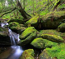 """Mossy Creek"" by Husky"