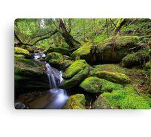 """Mossy Creek"" Canvas Print"