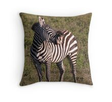 Sing along if you know the words... Throw Pillow