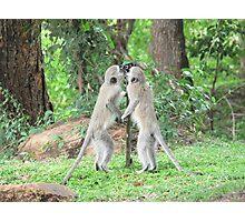 Monkey Thirst Photographic Print