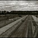 Auschwitz Birkenau - From the Death Gate by Peter Harpley