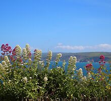 Sea And Flowers At North Cornwall by rumisw