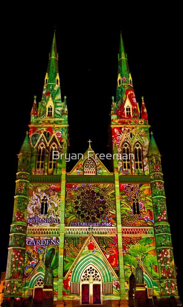 St Marys Cathedral (Gardens) - Vivid Festival - Sydney - Australia by Bryan Freeman