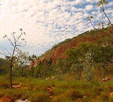 A Kimberley scene by georgieboy98