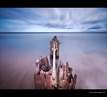 Alnmouth Groynes V by Ian Parry